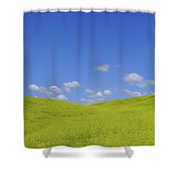 Rapeseed Landscape Shower Curtain by Marius Sipa