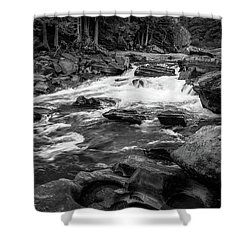 Rapids Through The Forest Bw Shower Curtain