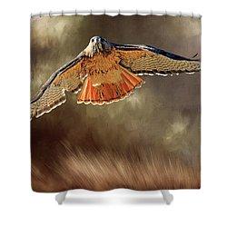 Raptor Shower Curtain by Donna Kennedy