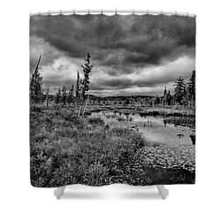 Shower Curtain featuring the photograph Raquette Lake Bog by David Patterson