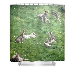 Play Together Prey Together Shower Curtain