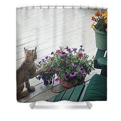Swat The Petunias Shower Curtain