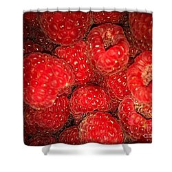 Raspberries Shower Curtain by Sylvie Leandre