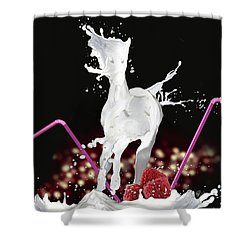 Raspberry Coctail And A Horse Shower Curtain