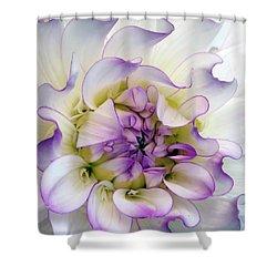 Raspberry And Cream Shower Curtain