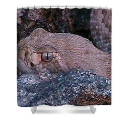 Rattlesnake Portrait Shower Curtain
