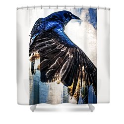 Shower Curtain featuring the photograph Raven Attitude by Carolyn Marshall