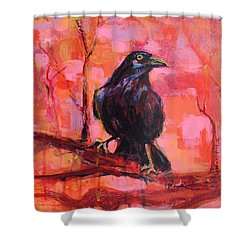 Raven Bright Shower Curtain by Mary Schiros