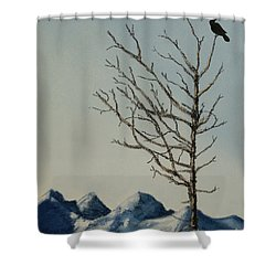 Raven Brought Light Shower Curtain by Stanza Widen
