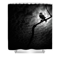 Raven, Death Valley Shower Curtain by Marius Sipa
