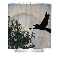 Raven Holds The Sun Shower Curtain by Stanza Widen