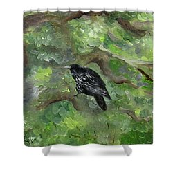 Raven In The Om Tree Shower Curtain