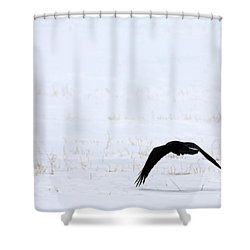 Raven In The Snow Shower Curtain