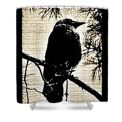 Raven On The Lookout Shower Curtain