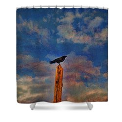 Shower Curtain featuring the photograph Raven Pole by Jan Amiss Photography