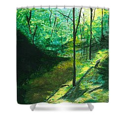 Raven Rocks 3 Shower Curtain