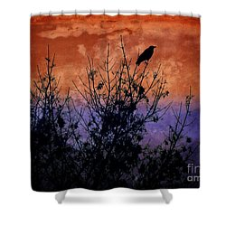Raven Sentinel Shower Curtain by Dee Flouton