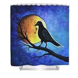 Raven With Key Shower Curtain