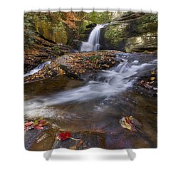 Ravens Cliff Shower Curtain by Debra and Dave Vanderlaan