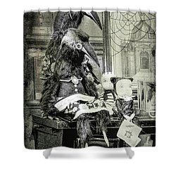 Ravens For Halloween Shower Curtain