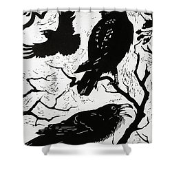 Ravens Shower Curtain by Nat Morley