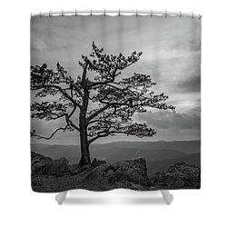 Raven's Roost Shower Curtain
