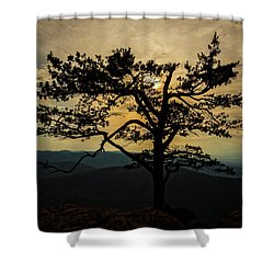 Ravens Roost Hdr Shower Curtain