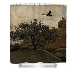 Ravens Searching For Food Shower Curtain