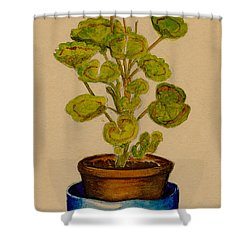 Shower Curtain featuring the painting Ray-bet Geranium by Betty Hammant