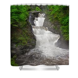 Shower Curtain featuring the photograph Raymondskill Falls by Susan Candelario
