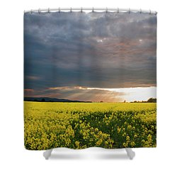Rays At Sunset Shower Curtain by Rob Hemphill