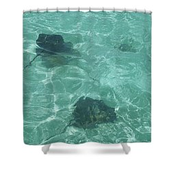 Rays Shower Curtain