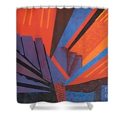 Rays Floor Cloth - Sold Shower Curtain