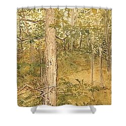 Raystown Lake Shower Curtain by Leah  Tomaino