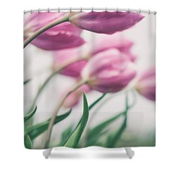 Reach Shower Curtain