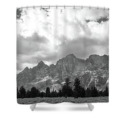 Shower Curtain featuring the photograph Reach To The Sky by Colleen Coccia