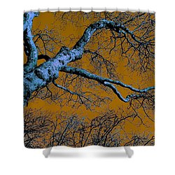 Reaching For The Skies Shower Curtain