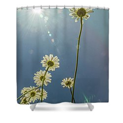Reaching For The Sun Shower Curtain by Garry McMichael