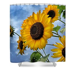 Shower Curtain featuring the digital art Reaching For The Sun by Phil Mancuso