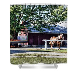 Shower Curtain featuring the photograph Ready And Waiting by Cricket Hackmann