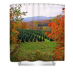 Ready For Christmas Shower Curtain by Dale R Carlson