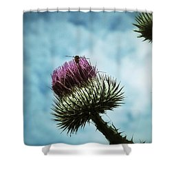 Shower Curtain featuring the photograph Ready For Take-off by Karen Stahlros