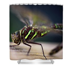 Ready For Takeoff Shower Curtain by Sherman Perry