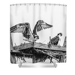 Ready To Fly Bw Shower Curtain