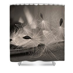Ready To Fly Shower Curtain by Deborah Smith