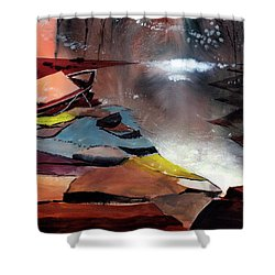 Shower Curtain featuring the painting Ready To Leave by Anil Nene