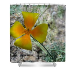 One Gold Flower Living Life In The Desert Shower Curtain