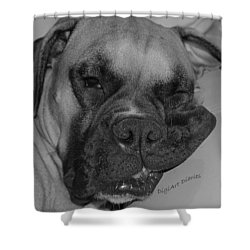 Really Comfy Shower Curtain by DigiArt Diaries by Vicky B Fuller