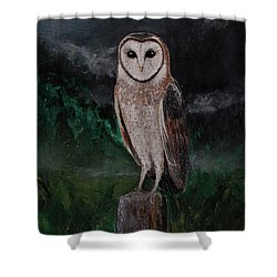 Realsim Barn Owl Painting With Mountain Landscape Shower Curtain