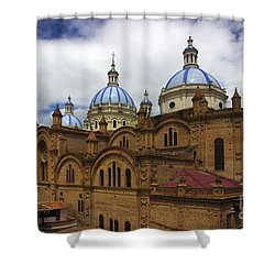 Rear Corner View Of Immaculate Conception Cathedral Shower Curtain